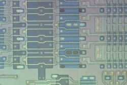 Optical microscope image circuit